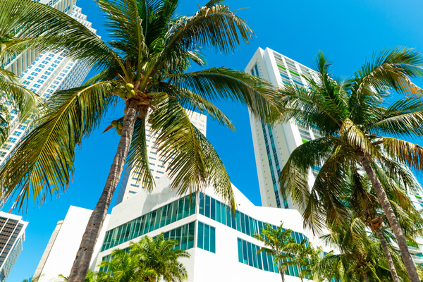 Commercial Property Manager in North Miami, FL